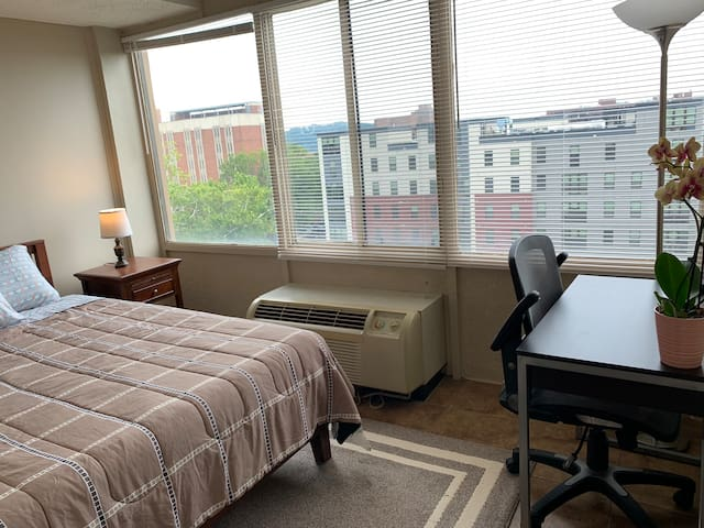 **Awesome Private Studio Close to UT & Downtown**