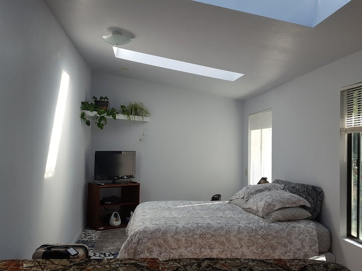 The skylight room