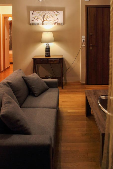 Beatiful sofa and wooden floors. Cozy lighting and decoration