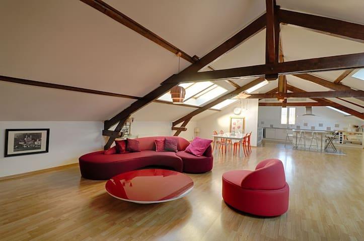 Très bel appartement typé loft - cours Napoléon