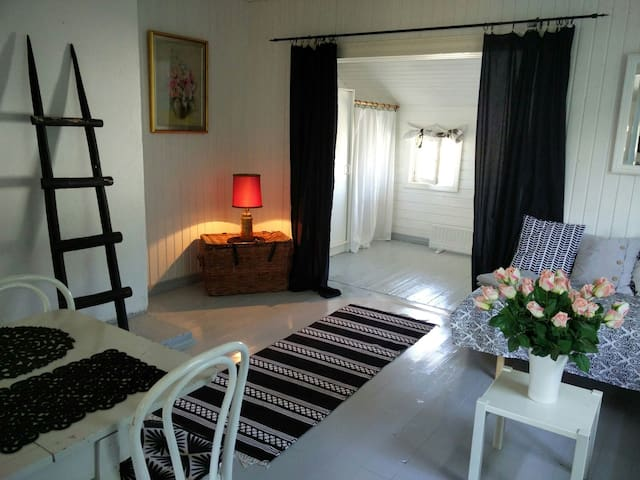 Lovely room in an old wooden house 4 persons - Hanko - Talo