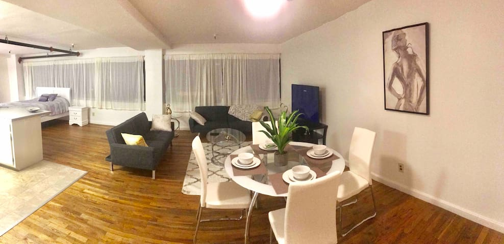 Entire Spacious  Apartment w Parking Downtown SD