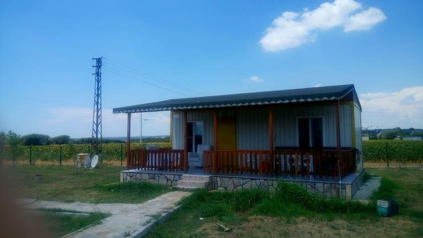Mecidiye'de denize 50 metre Ev - Mecidiye Belediyesi