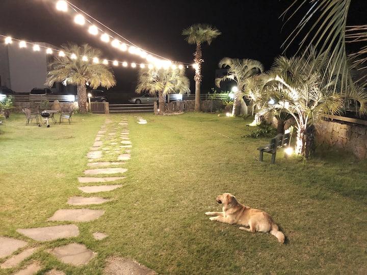 도시어부 촬영지-테라스가 있는 객실 #마라도 여객선 #산방산 #송악산#용머리해안#올레10길