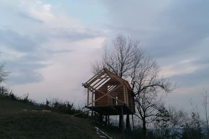 Treehouse on eco estate under Bjelasica mountain