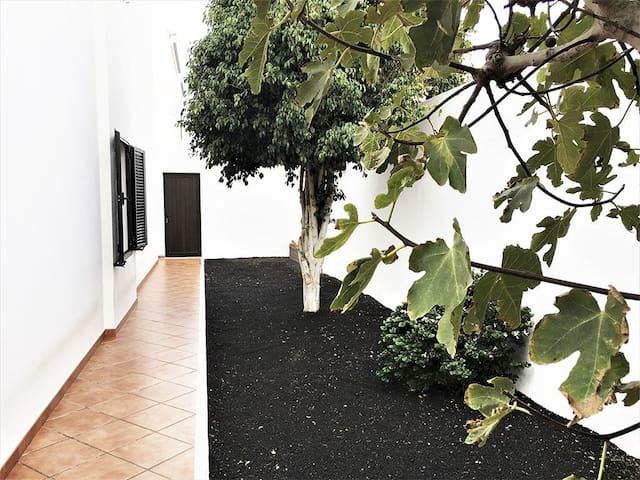 Lateral casa - jardín