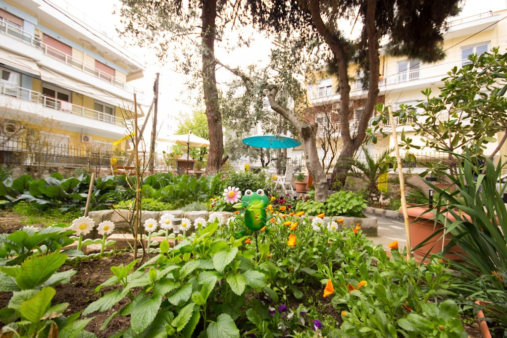Our garden is big and comfortable. You will be able to spend the nights of summer in our soothing environment and use our BBQ to prepare your meal