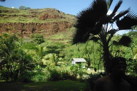 Coconut Grove: Cabin 1 - Waimea