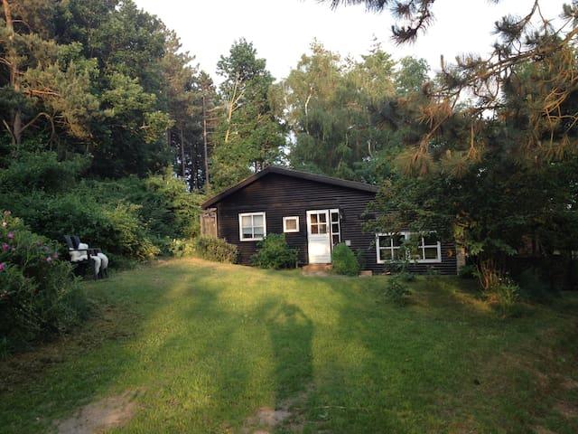 Sommerhus i hjertet af Mols bjerge. - Knebel - Blockhütte
