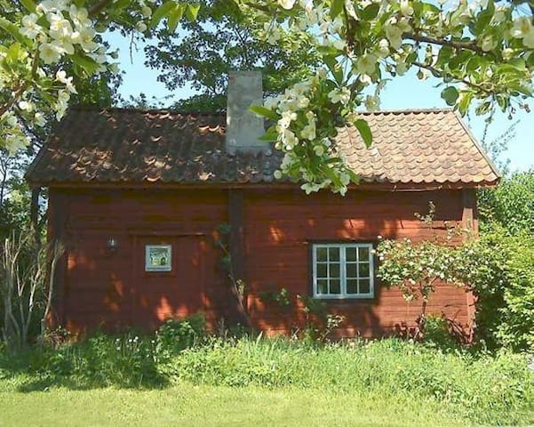 Pretty Cottage - Stora Bråbo - Huis