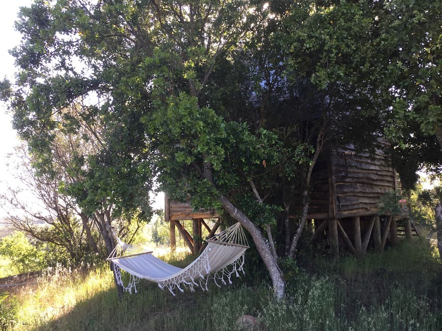 Your private hammock