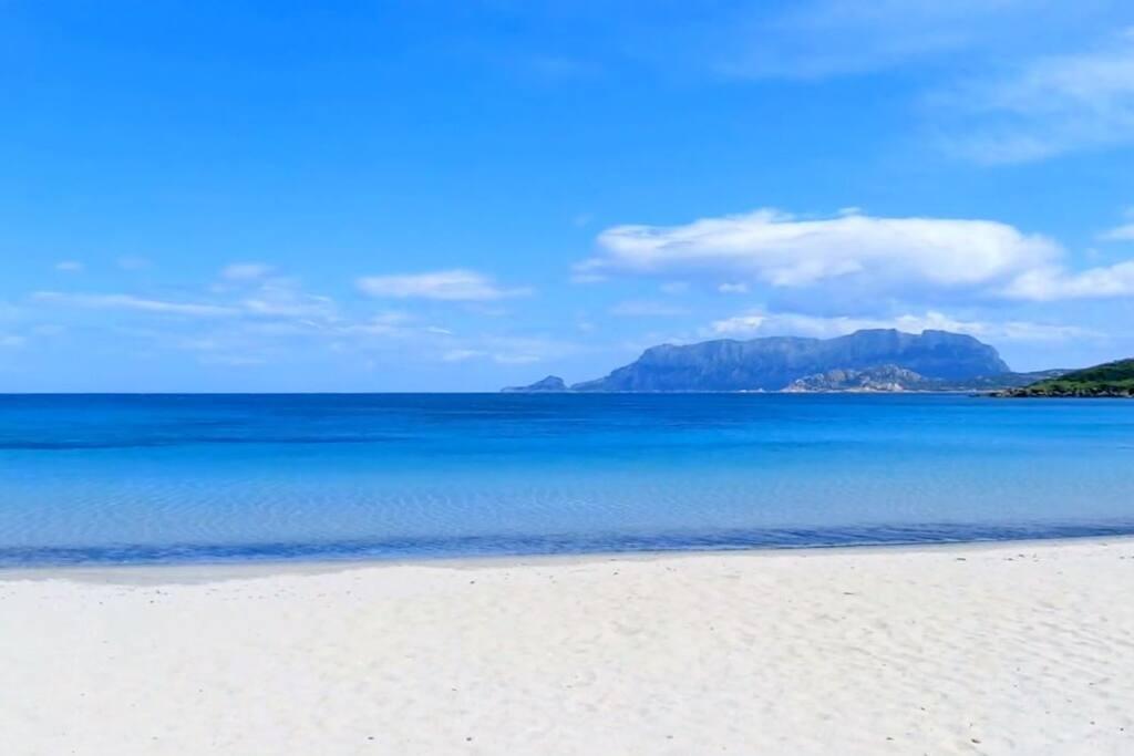 Pittulongu - spiaggia
