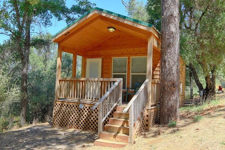 Yosemite Pines Resort Cozy Cabin for 4