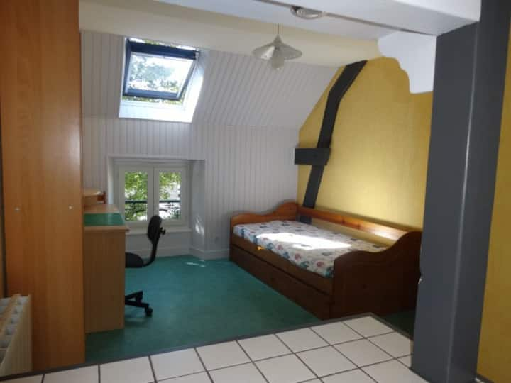 Centre Vichy, studio meublé