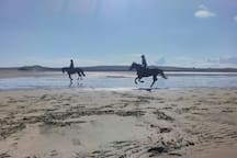 ....Enniscrone is 20 minutes away.   Why not enquire about a horse and rider holiday?  You bring your steed, we provide the accomadation for you both, and you use our 55m ×25m arena, our trails, and visit other fab treks in the county as you're here.