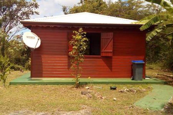 Exotic Wood bungalow