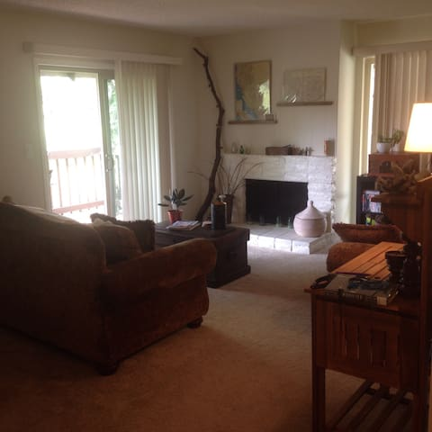 Great single  bedroom apartment - Walnut Creek - Apartament