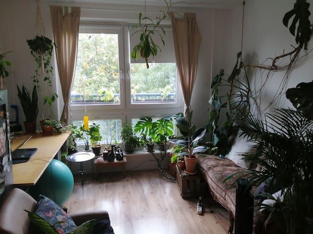 Cozy 20qm room in Friedrichshain
