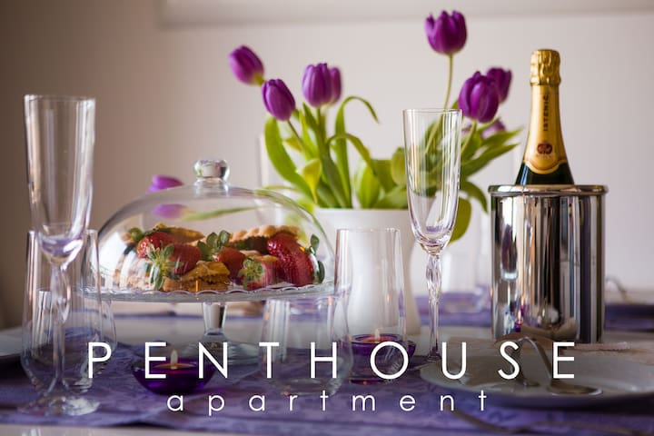 PENTHOUSE IN THE CITY & PARKING - Maribor - Apartemen
