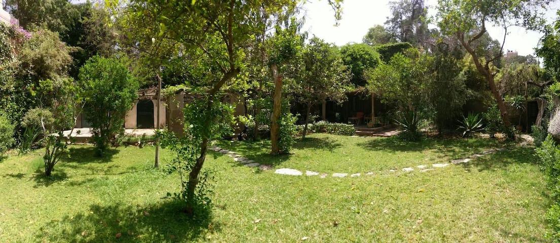 Charming Maadi Maisonette Nestled in Lush Garden