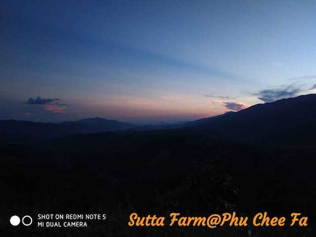 Sutta Farm tents