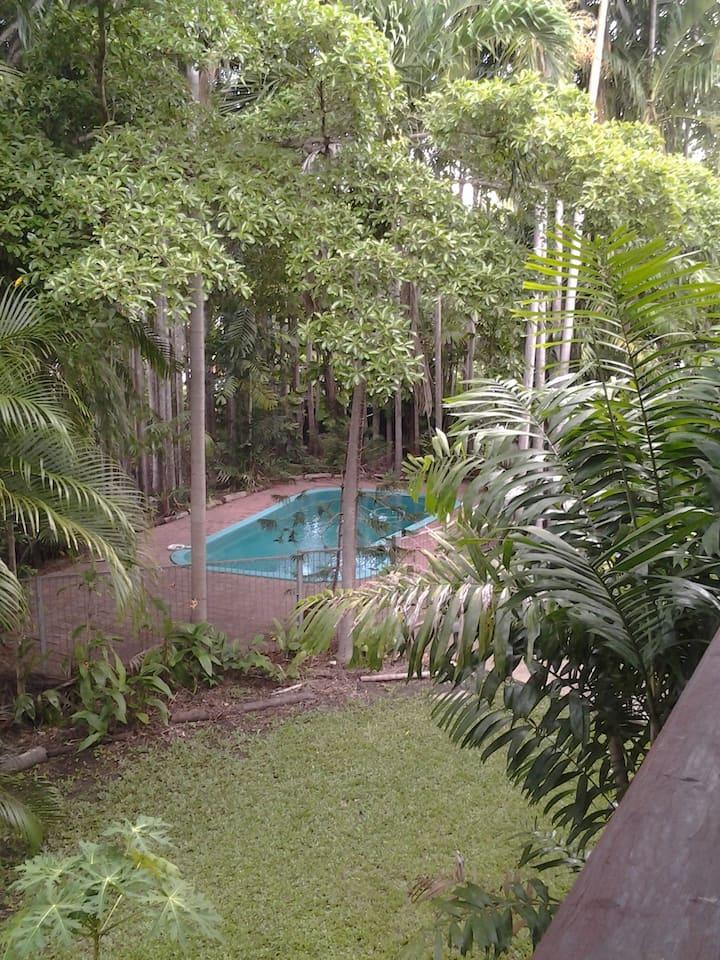 Tropical house and garden