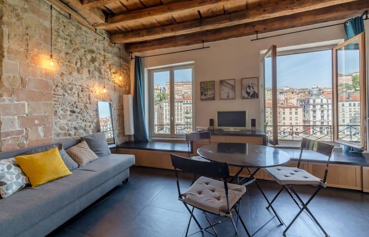 Splendid apartment overlooking the Saone