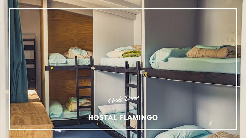 cama en habitacion compartida de 6