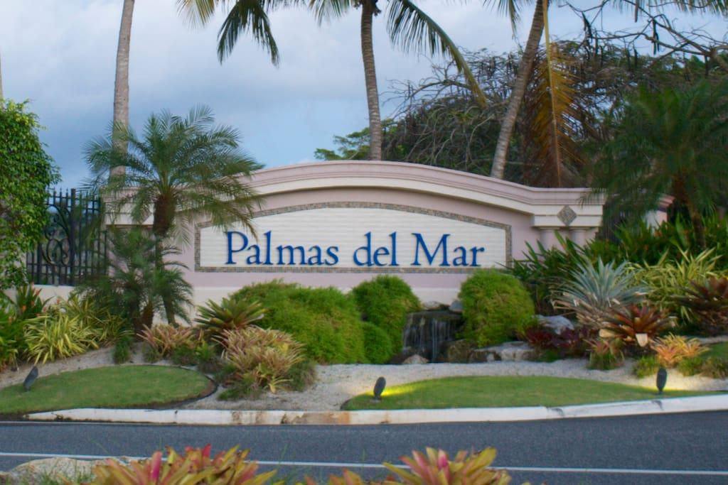 Main Palmas del Mar Entry