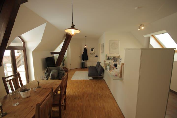 Loft-Style Flat in Historic House - 브레멘 - 아파트
