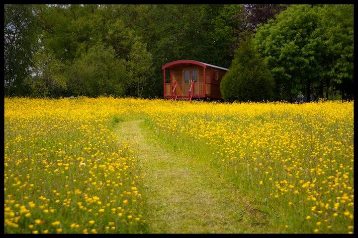 Oxslip ,Shepherds Hut, Near to Beautiful Southwold