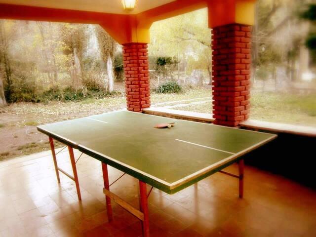 Mesa de ping pong en galería