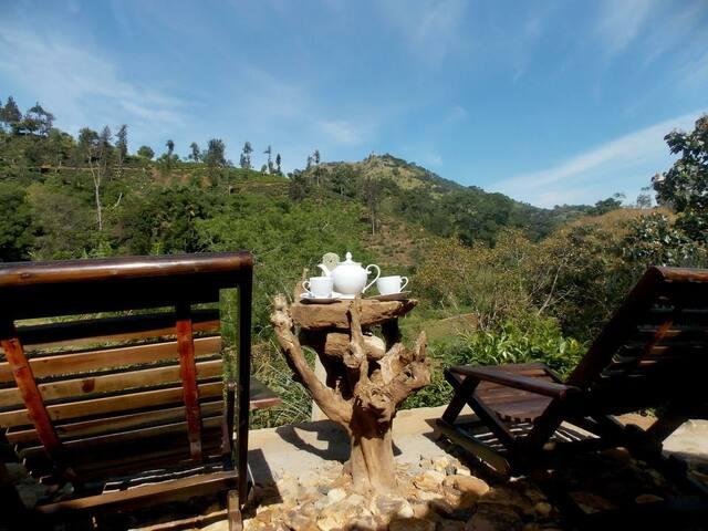 Wild view ella( luxury host with mountain view)