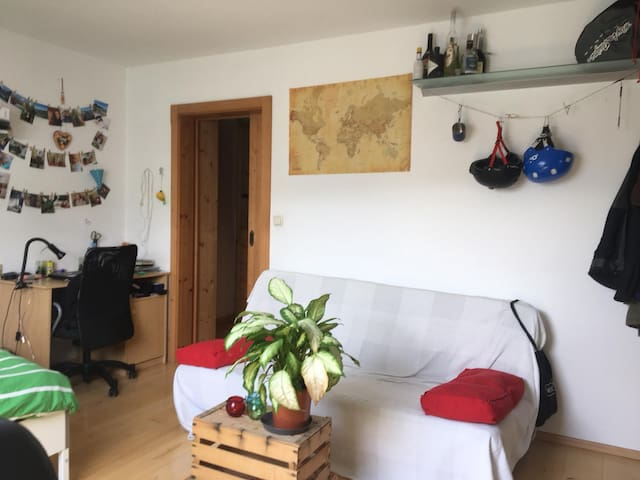 Big room in large and comfy shared flat
