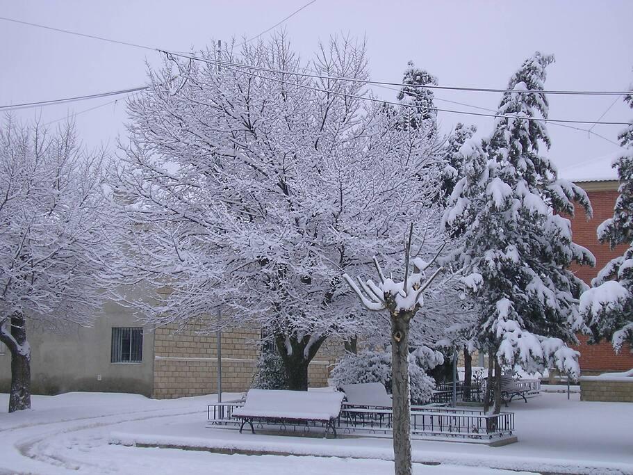 Paisaje nevado invernal