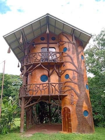 The Oropendula Birdhouse