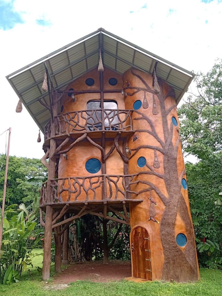 The Oropendula Birdhouse