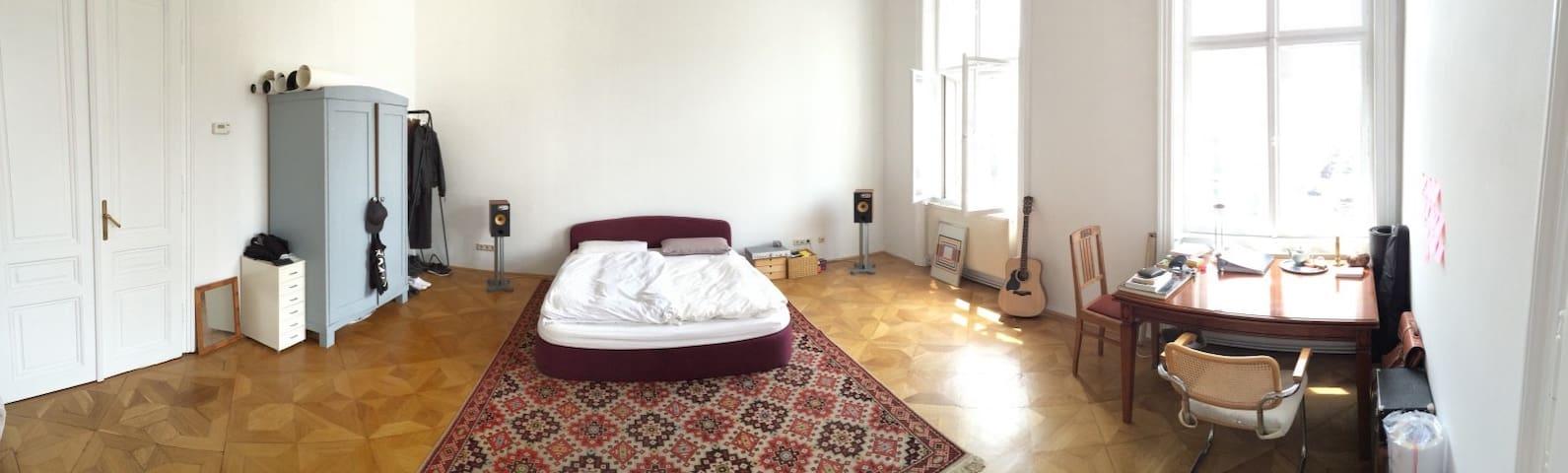 Riesiges 32qm-Zimmer in zentralem Altbau - Wien - Apartment