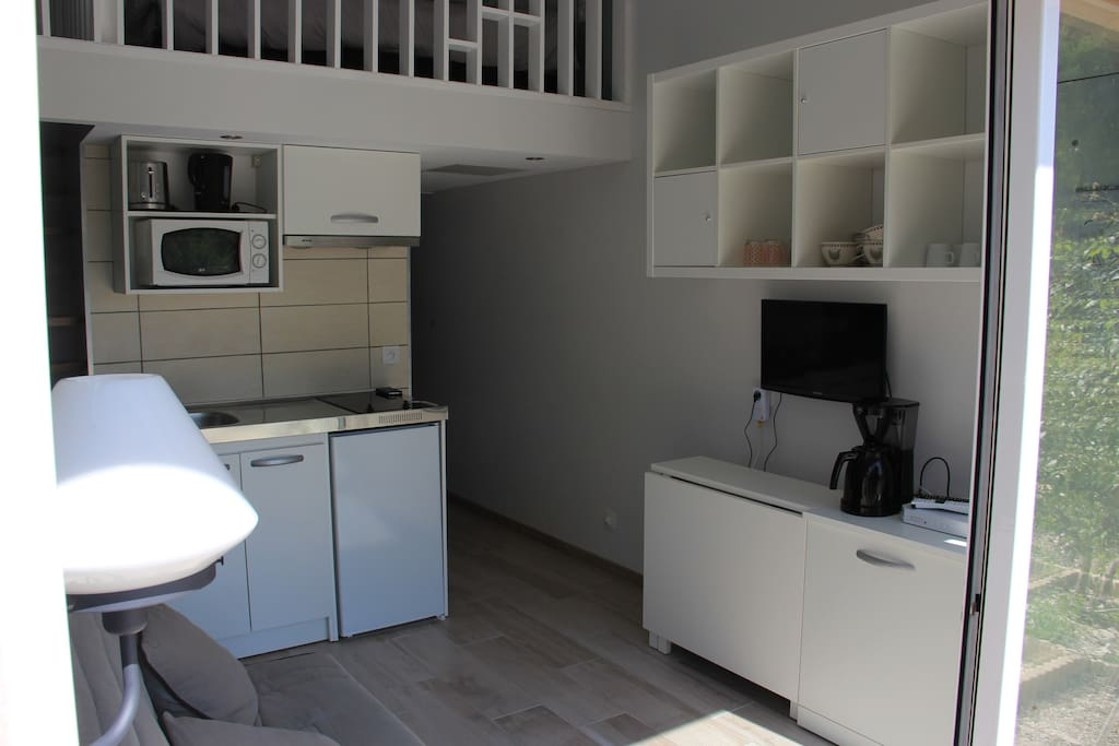 Vue de la pièce à vivre, avec les équipements constituant cette pièce ouverte par une large baie vitrée sur le jardin arboré
