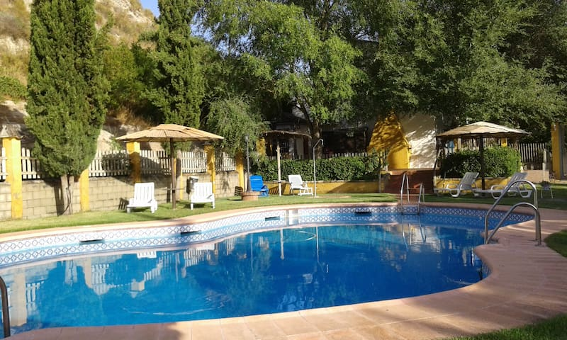 House with private pool and garden - Palenciana
