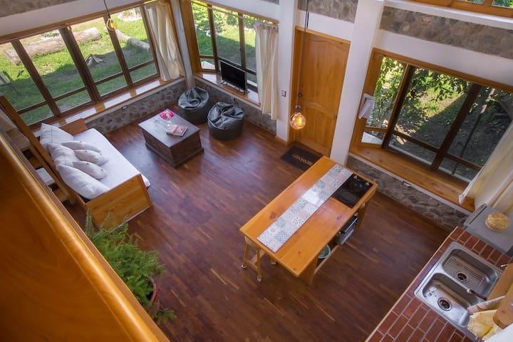 Casa Aparicio Loft