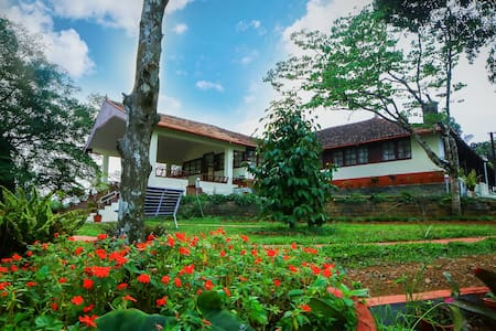 Standard Double Room-WAYANAD