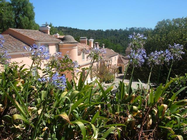 Quinta da Fonteireira 8p - Belas - Guesthouse