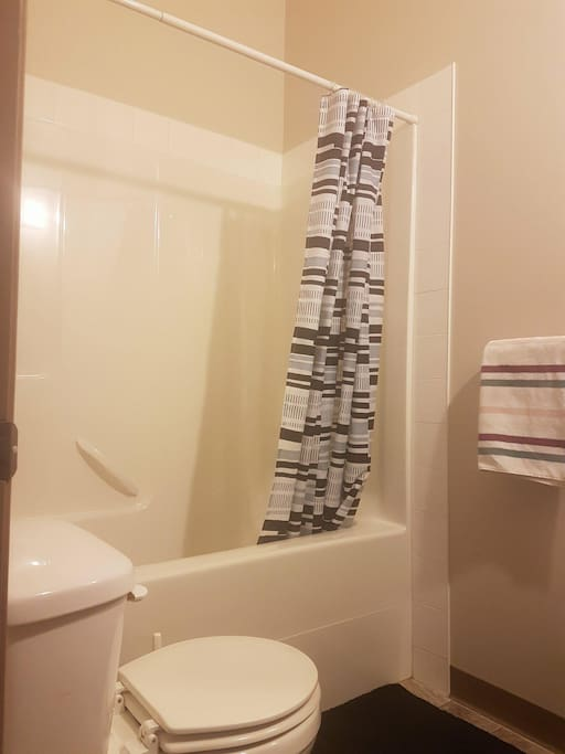 Another shot of the main bathroom. You can't quite see the vaulted ceiling.