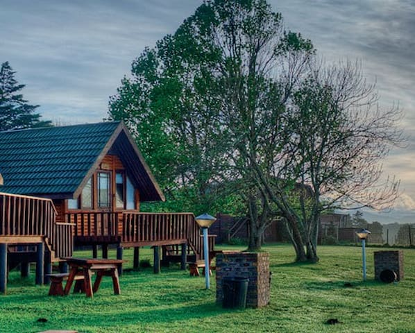 Log Cabin Self Catering View of Game in Nature