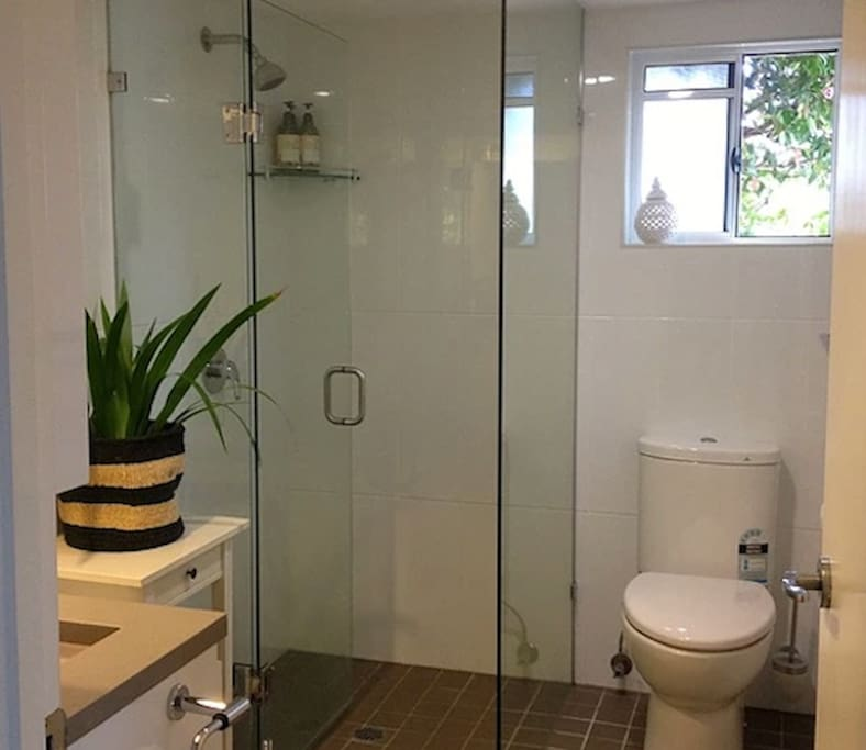 Newly renovated bathroom with walk-in shower.