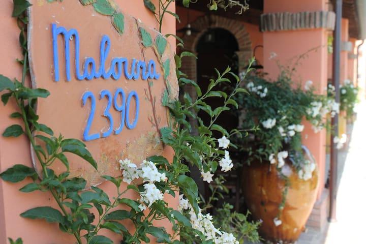 Appartamento  grazioso  in campagna vicino al mare - Savignano sul Rubicone - Дом