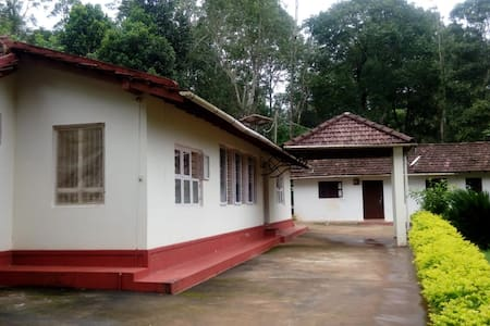 Coffee plantation stay at Coorg