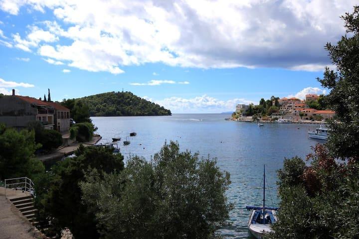 Two bedroom apartment near beach Brna (Korčula) (A-4425-a)