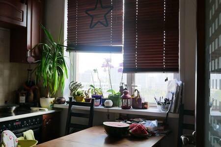 1-комнатная квартира на Братиславской - Moskva